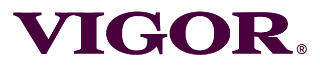 VIgor - Restaurant branding and marketing agency